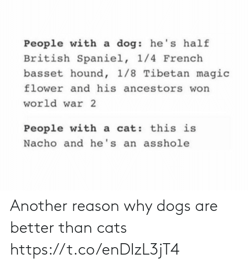 Dogs: Another reason why dogs are better than cats https://t.co/enDIzL3jT4
