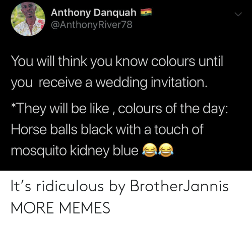 Be Like, Dank, and Memes: Anthony Danquah  @AnthonyRiver78  You will think yoOu know colours until  you receive a wedding invitation.  They will be like ,colours of the day:  Horse balls black with a touch of  mosquito kidney blue It's ridiculous by BrotherJannis MORE MEMES