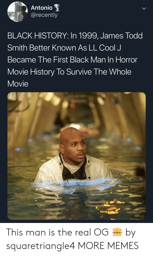 horror movie: Antonio  @recently  BLACK HISTORY: In 1999, James Todd  Smith Better Known As LL Cool J  Became The First Black Man In Horror  Movie History To Survive The Whole  Movie This man is the real OG 👑 by squaretriangle4 MORE MEMES