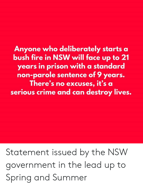 bush: Anyone who deliberately starts a  bush fire in NSW will face up to 21  years in prison with a standard  non-parole sentence of 9 years.  There's no excuses, it's a  serious crime and can destroy lives. Statement issued by the NSW government in the lead up to Spring and Summer