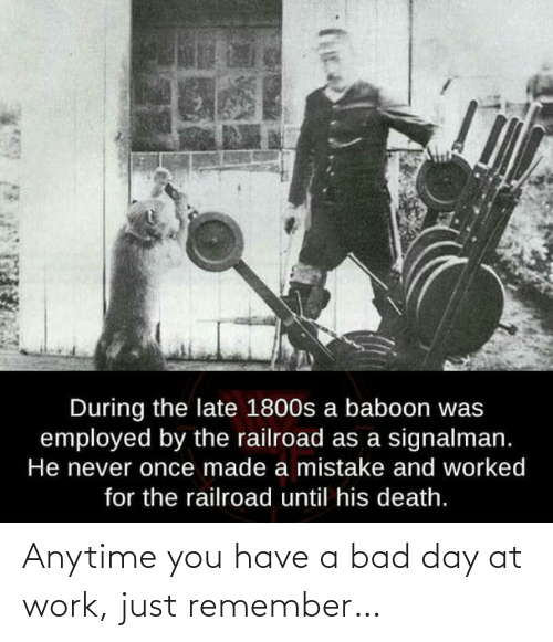 Work: Anytime you have a bad day at work, just remember…