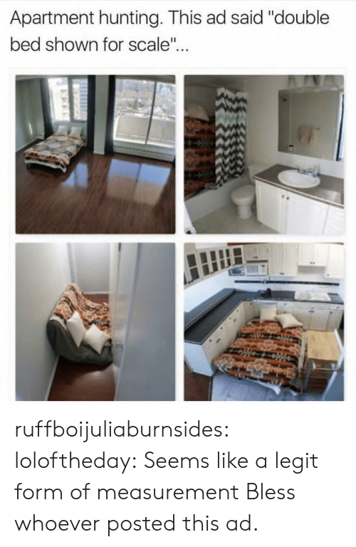"""For Scale: Apartment hunting. This ad said """"double  bed shown for scale"""".. ruffboijuliaburnsides: loloftheday: Seems like a legit form of measurement  Bless whoever posted this ad."""