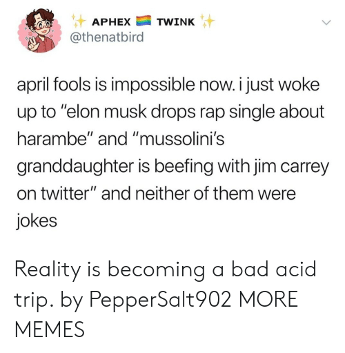 """Bad, Dank, and Jim Carrey: APHEXTWINK  @thenatbird  april fools is impossible now. i just woke  up to """"elon musk drops rap single about  harambe"""" and """"mussolini's  granddaughter is beefing with jim carrey  on twitter"""" and neither of them were  jokes Reality is becoming a bad acid trip. by PepperSalt902 MORE MEMES"""