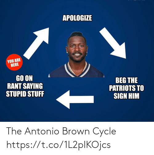 Football, Nfl, and Patriotic: APOLOGIZE  YOU ARE  HERE  GO ON  RANT SAYING  STUPID STUFF  BEG THE  PATRIOTS TO  SIGN HIM The Antonio Brown Cycle https://t.co/1L2pIKOjcs