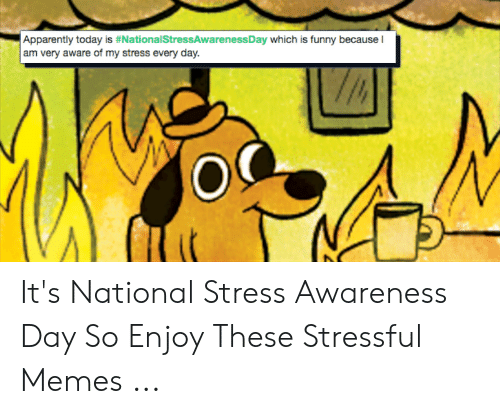 Funny Stress Memes: Apparently today is #NationalstressAwarenessDay which is funny because I  am very aware of my stress every day. It's National Stress Awareness Day So Enjoy These Stressful Memes ...