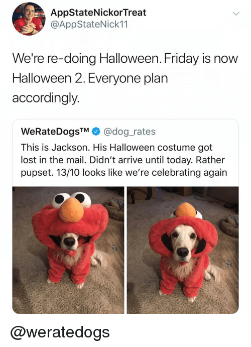 accordingly: AppStateNickorTreat  @AppStateNick11  We're re-doing Halloween. Friday is now  Halloween 2. Everyone plan  accordingly  WeRateDogs™ + @dog-rates  This is Jackson. His Halloween costume got  lost in the mail. Didn't arrive until today. Rather  pupset. 13/10 looks like we're celebrating again @weratedogs