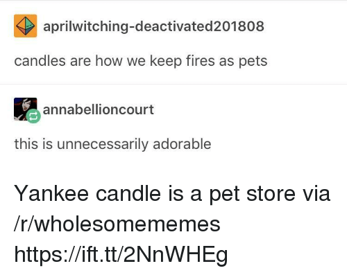 Yankee Candle, Pets, and Candles: aprilwitching-deactivated201808  candles are how we keep fires as pets  annabellioncourt  this is unnecessarily adorable Yankee candle is a pet store via /r/wholesomememes https://ift.tt/2NnWHEg