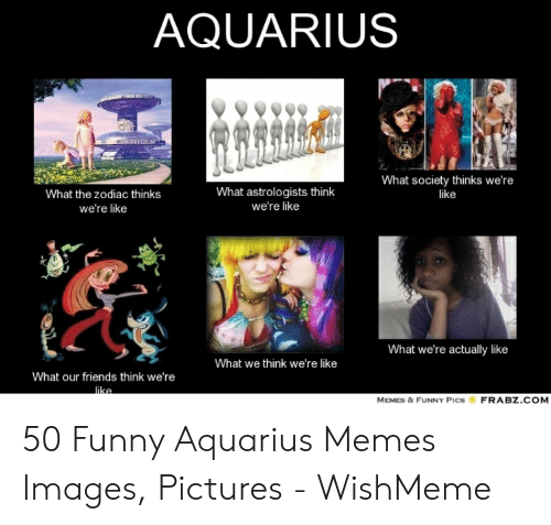 9329ff41b Friends, Funny, and Memes: AQUARIUS What society thinks we're like What