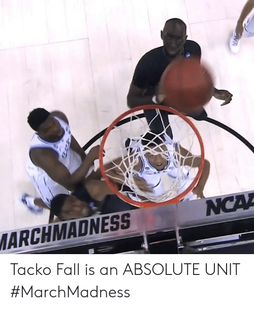 marchmadness: ARCHMADNESS Tacko Fall is an ABSOLUTE UNIT #MarchMadness