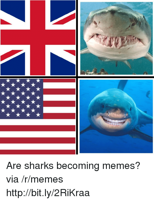 Memes, Http, and Sharks: Are sharks becoming memes? via /r/memes http://bit.ly/2RiKraa