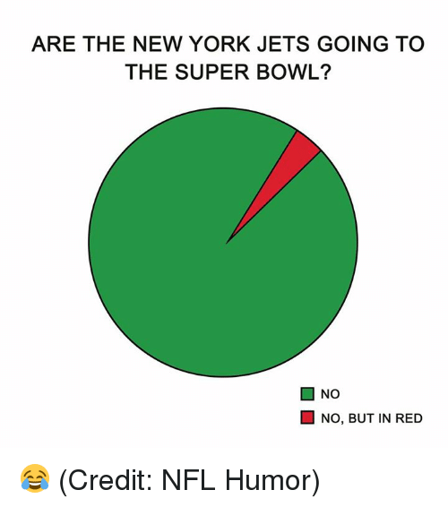 New York, New York Jets, and Nfl: ARE THE NEW YORK JETS GOING TO  THE SUPER BOWL?  ■ NO  NO, BUT IN RED 😂 (Credit: NFL Humor)