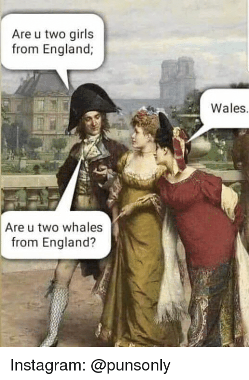 England, Girls, and Instagram: Are u two girls  from England;  Wales.  Are u two whales  from England? Instagram: @punsonly