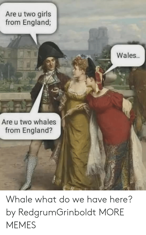 Dank, England, and Girls: Are u two girls  from England;  Wales..  Are u two whales  from England? Whale what do we have here? by RedgrumGrinboldt MORE MEMES