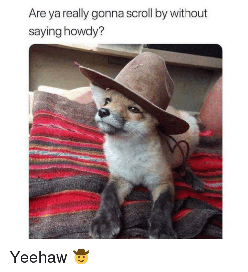 yeehaw: Are ya really gonna scroll by without  saying howdy? Yeehaw 🤠