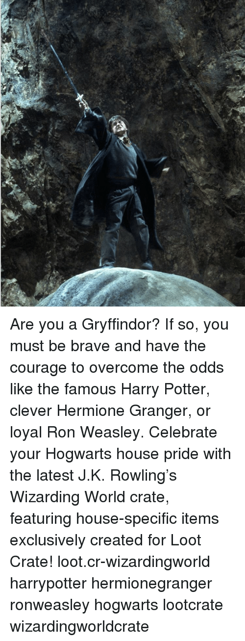 Overcomed: Are you a Gryffindor? If so, you must be brave and have the courage to overcome the odds like the famous Harry Potter, clever Hermione Granger, or loyal Ron Weasley. Celebrate your Hogwarts house pride with the latest J.K. Rowling's Wizarding World crate, featuring house-specific items exclusively created for Loot Crate! loot.cr-wizardingworld harrypotter hermionegranger ronweasley hogwarts lootcrate wizardingworldcrate