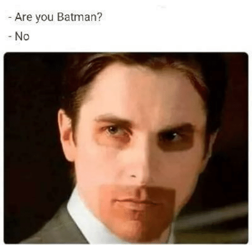 Batman, You, and Are You: Are you Batman?  -No