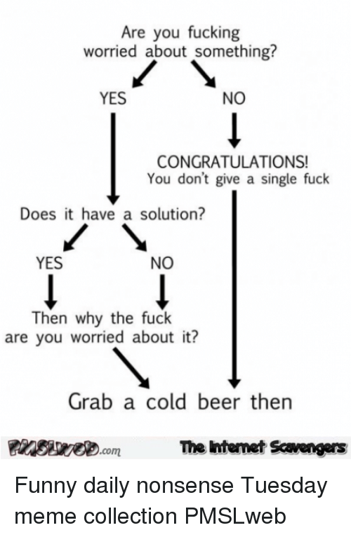 Cold Beer: Are you fucking  worried about something?  YES  NO  CONGRATULATIONS!  You don't give a single fuck  Does it have a solution?  YES  NO  Then why the fuck  are you worried about it?  Grab a cold beer thern  PinsiyecomThe intemet Scavengers <p>Funny daily nonsense  Tuesday meme collection  PMSLweb </p>