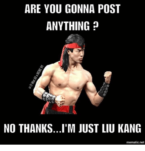 liu kang: ARE YOU GONNA POST  ANYTHING?  NO THANKS...I'M JUST LIU KANG  mematic.net