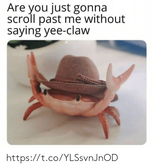 yee: Are you just gonna  scroll past me without  saying yee-claw https://t.co/YLSsvnJnOD