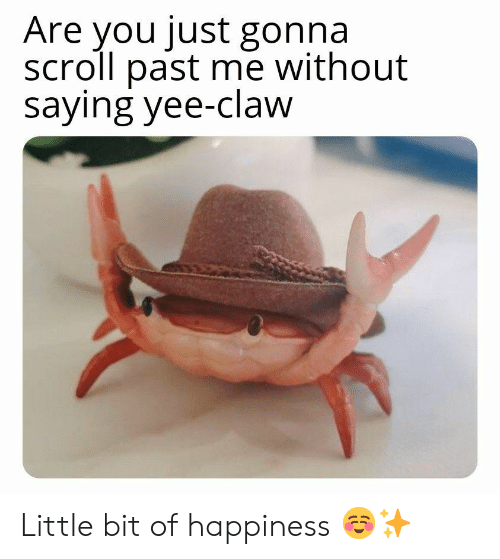 yee: Are you just gonna  scroll past me without  saying yee-claw Little bit of happiness ☺✨