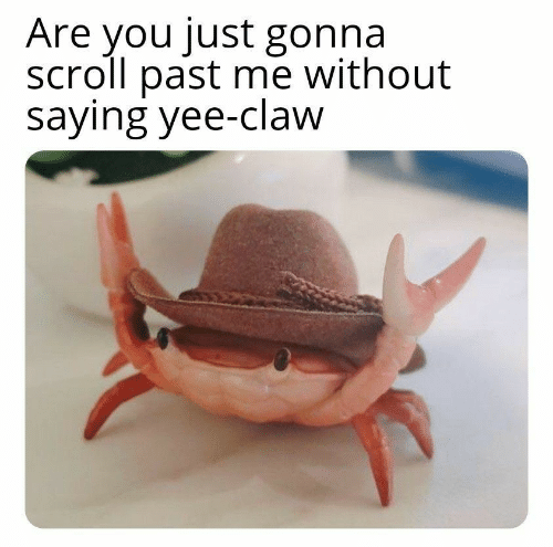 yee: Are you just gonna  scroll past me without  saying yee-claw