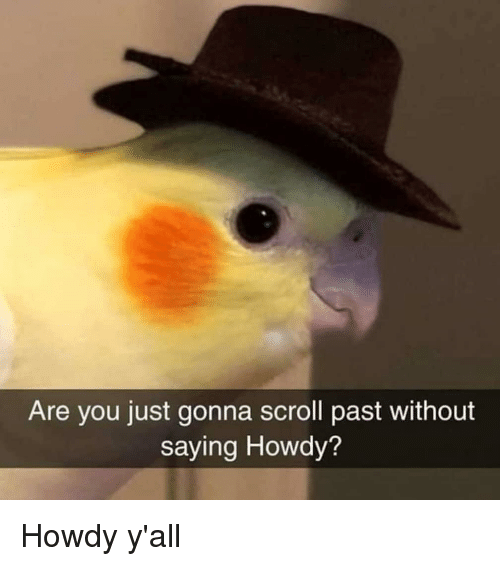 Are You Just Gonna Scroll Past Without Saying Howdy