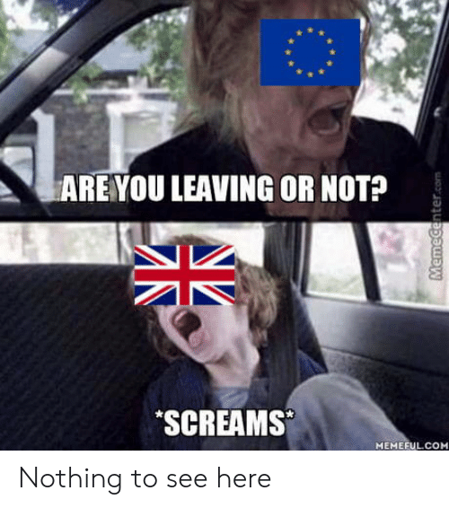 You, Nothing, and Are You: ARE YOU LEAVING OR NOT?  SCREAMS  MEMEFULCOM Nothing to see here