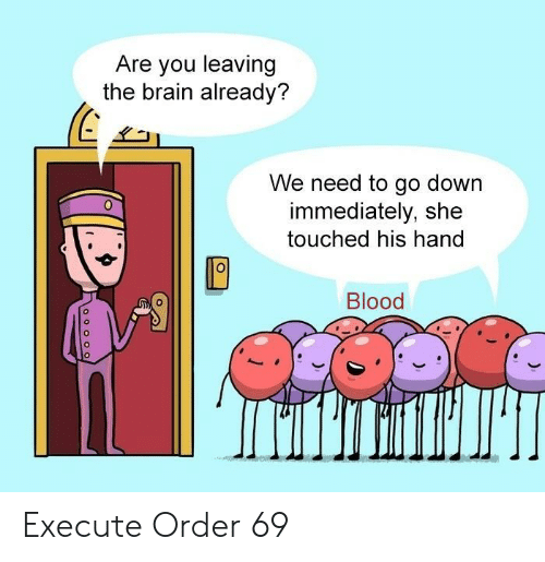 Brain, Blood, and Down: Are you leaving  the brain already?  We need to go down  immediately, she  touched his hand  Blood  o o o oO Execute Order 69
