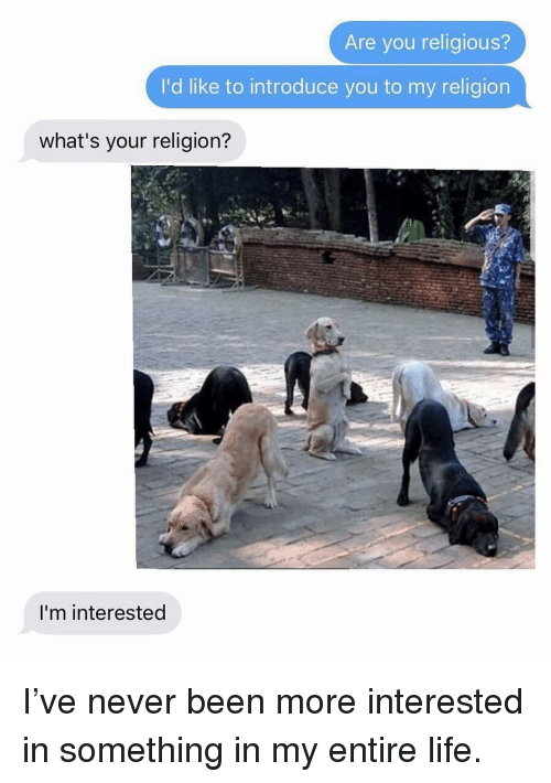 Life, Memes, and Never: Are you religious?  I'd like to introduce you to my religion  what's your religion?  I'm interested I've never been more interested in something in my entire life.
