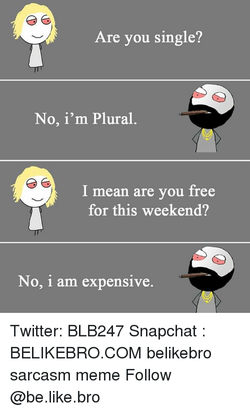 Snapchater: Are you single?  No, i'm Plural  I mean are you free  for this weekend?  No, i am expensive. Twitter: BLB247 Snapchat : BELIKEBRO.COM belikebro sarcasm meme Follow @be.like.bro