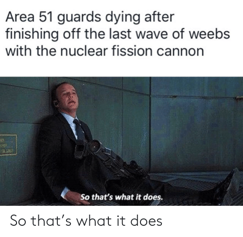 Finishing: Area 51 guards dying after  finishing off the last wave of weebs  with the nuclear fission cannon  25  So that's what it does. So that's what it does