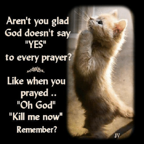 "God Kill Me Now: Aren't you glad  God doesn't say  YES""  to every prayer?  Like when you  prayed.  ""Oh God""  ""Kill me now""  Remember?  JV"