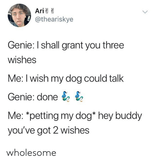 Wholesome, Got, and Genie: Ari  @theariskye  Genie: I shall grant you three  wishes  Me: I wish my dog could talk  Genie: done  Me: *petting my dog* hey buddy  you've got 2 wishes wholesome