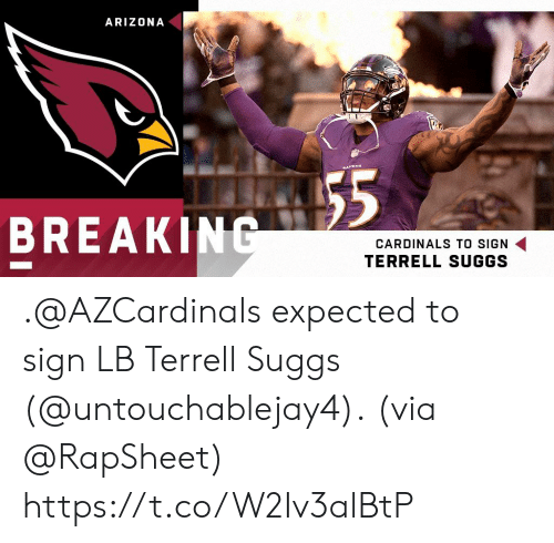 Memes, Arizona, and Cardinals: ARIZONA  BREAKING  CARDINALS TO SIGN  TERRELL SUGGS .@AZCardinals expected to sign LB Terrell Suggs (@untouchablejay4).  (via @RapSheet) https://t.co/W2Iv3alBtP