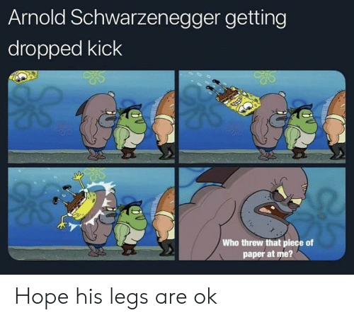 Arnold Schwarzenegger: Arnold Schwarzenegger getting  dropped kick  Who threw that piece of  paper at me? Hope his legs are ok