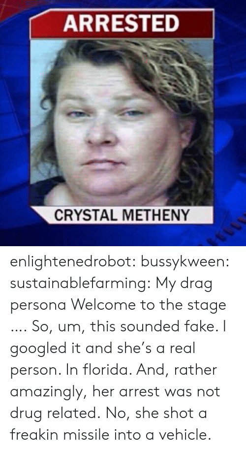 Fake, Target, and Tumblr: ARRESTED  CRYSTAL METHENY enlightenedrobot: bussykween:  sustainablefarming: My drag persona Welcome to the stage ….  So, um, this sounded fake. I googled it and she's a real person. In florida. And, rather amazingly, her arrest was not drug related. No, she shot a freakin missile into a vehicle.