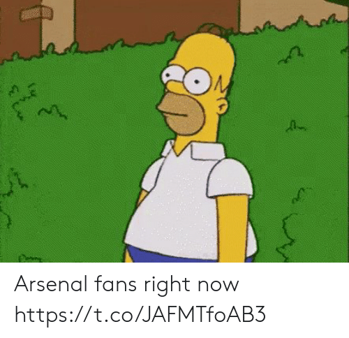Arsenal Fans: Arsenal fans right now https://t.co/JAFMTfoAB3