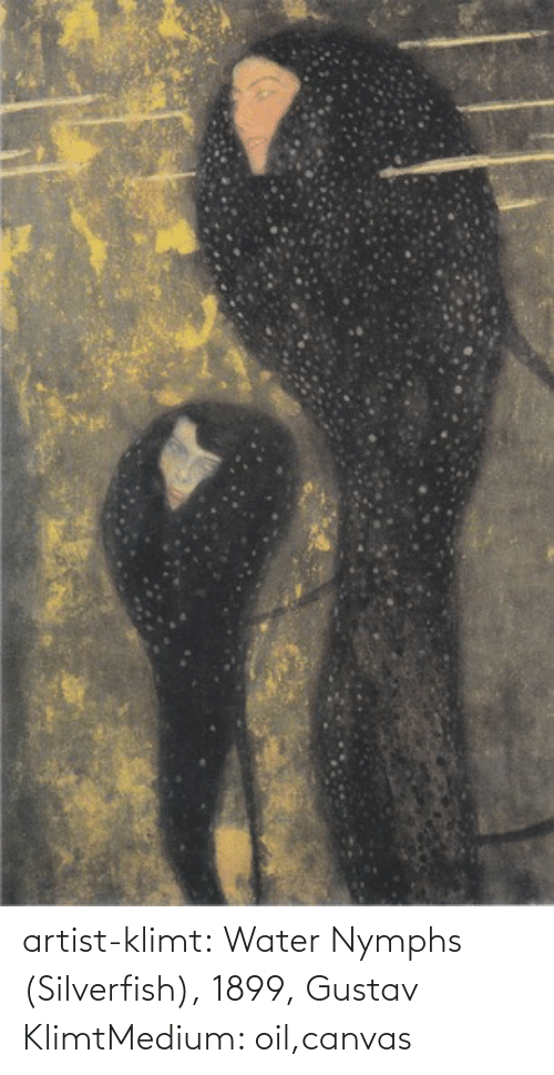 medium: artist-klimt:  Water Nymphs (Silverfish), 1899, Gustav KlimtMedium: oil,canvas