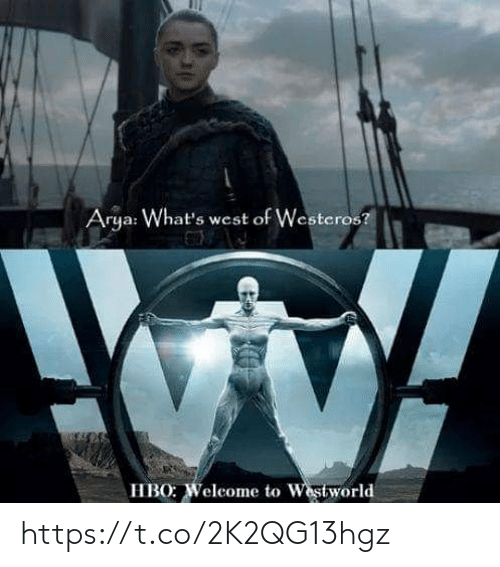 Hbo, Memes, and Arya: Arya: What's west of Westeros?  HBO: Weleome to Westworld https://t.co/2K2QG13hgz