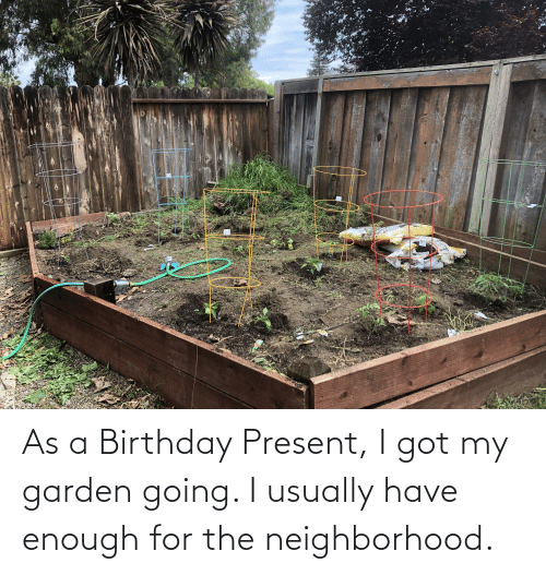 Have Enough: As a Birthday Present, I got my garden going. I usually have enough for the neighborhood.