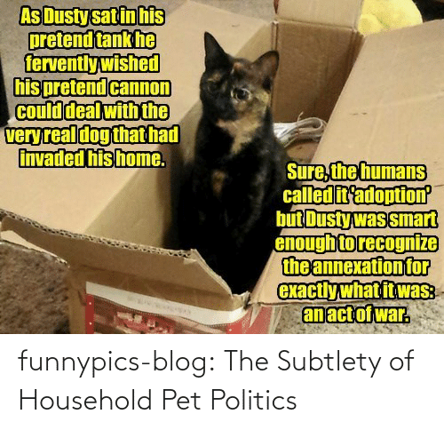 subtlety: As Dusty sat in his  pretend tank he  fervently wished  his pretend cannon  Could deal with the  veryreal dog that had  invaded his home.  Sure, the humans  called it'adoption  but Dusty was smart  enough to recognize  the annexation for  exactly what it was:  an act of war. funnypics-blog:  The Subtlety of Household Pet Politics