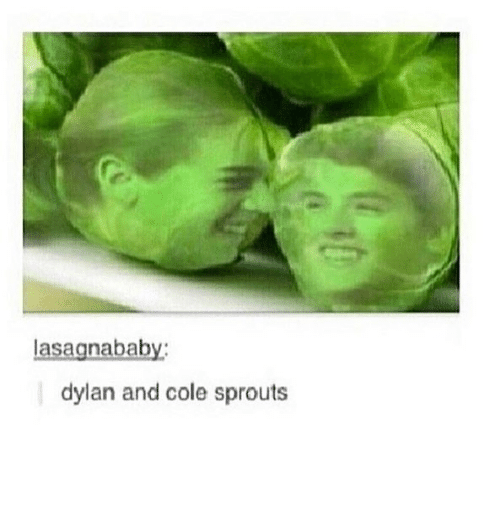 Memes, Sprouts, and 🤖: asagnababy  dylan and cole sprouts