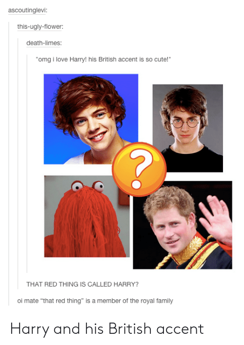 """Royal family: ascoutinglevi:  this-ugly-flower:  death-limes:  omg i love Harry!his British accent is so cute!""""  THAT RED THING IS CALLED HARRY?  oi mate """"that red thing"""" is a member of the royal family Harry and his British accent"""