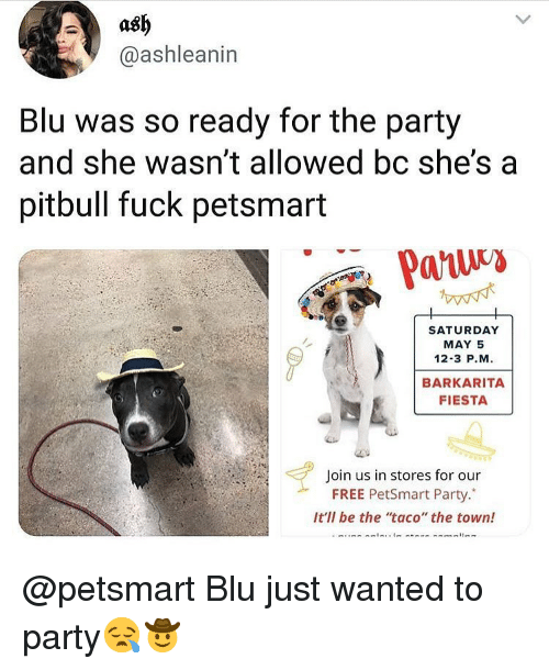 "May 5: ash  @ashleanin  Blu was so ready for the party  and she wasn't allowed bc she'sa  pitbull fuck petsmart  SATURDAY  MAY 5  12-3 P.M  BARKARITA  FIESTA  Join us in stores for our  FREE PetSmart Party.""  It'll be the taco"" the town! @petsmart Blu just wanted to party😪🤠"
