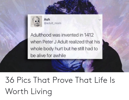 adulthood: Ash  eadult mom  Adulthood was invented in 1412  when Peter J Adult realized that his  whole body hurt but he still had to  be alive for awhile 36 Pics That Prove That Life Is Worth Living