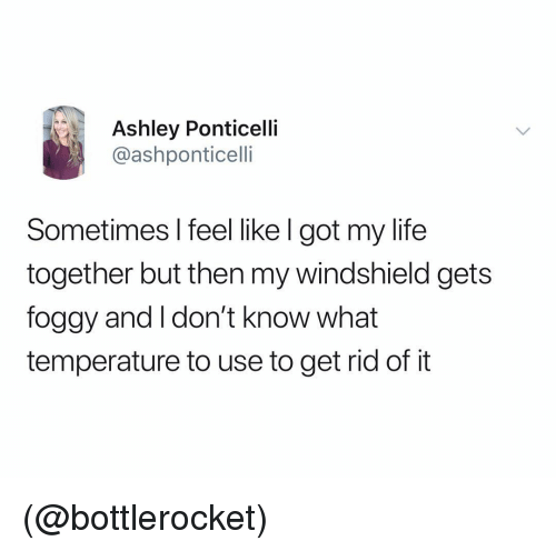 Life, Dank Memes, and Got: Ashley Ponticelli  @ashponticelli  Sometimes l feel like l got my life  together but then my windshield gets  foggy and I don't know what  temperature to use to get rid of it (@bottlerocket)