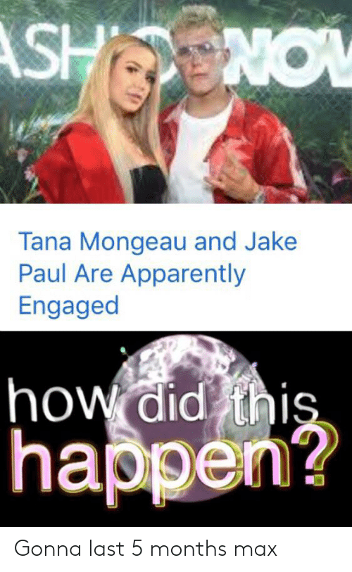 Apparently, Reddit, and Jake Paul: ASHNOW  Tana Mongeau and Jake  Paul Are Apparently  Engaged  how did this  happen? Gonna last 5 months max