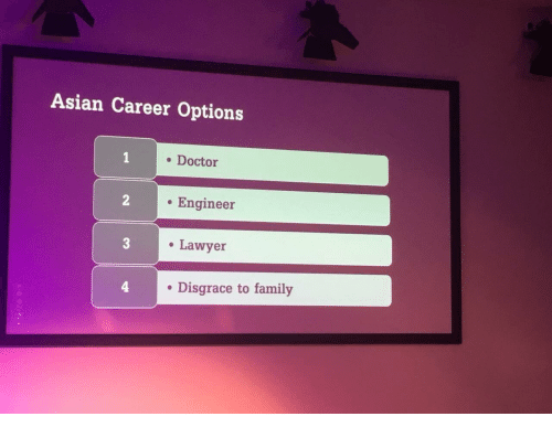 to family: Asian Career Options  . Doctor  . Engineer  Lawyer  . Disgrace to family