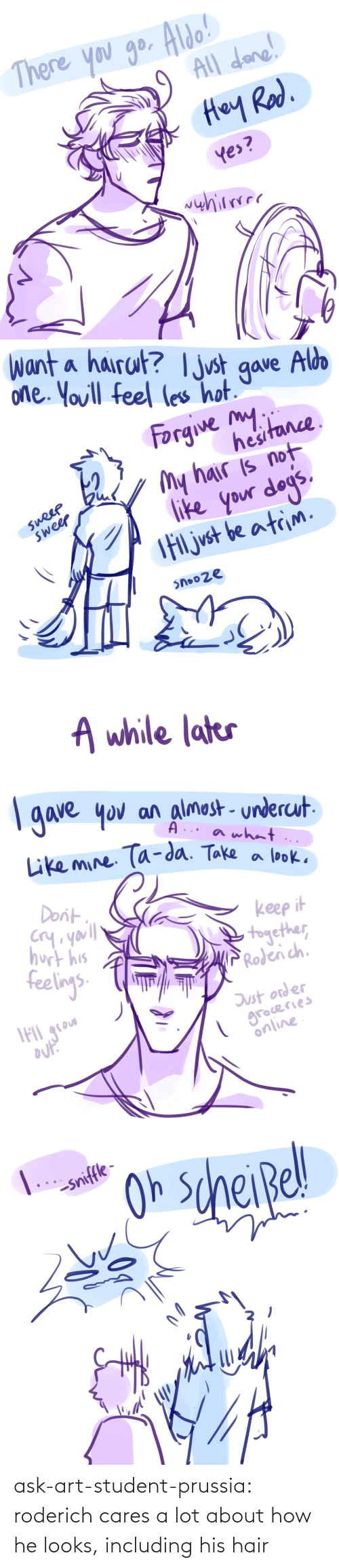 Looks: ask-art-student-prussia:  roderich cares a lot about how he looks, including his hair