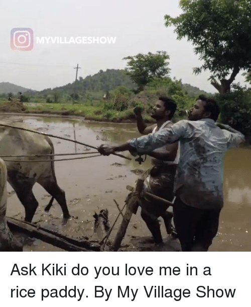 Dank, Love, and 🤖: Ask Kiki do you love me in a rice paddy.  By My Village Show